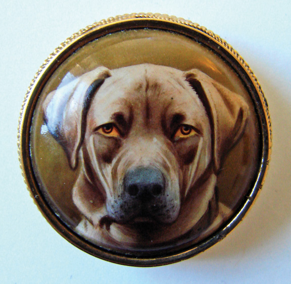 Portrait miniature of a Chocolate Labrador   1875